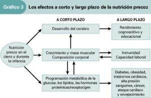 Efectos de la nutrición precoz
