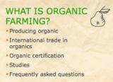 Alimentos ecológicos: ¿dan y garantizan lo queprometen?