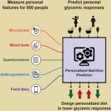Personalizar la dieta sí ¿pero en quésentido?
